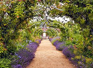 english-gardens-to-envy-thumb-300x220.jpg