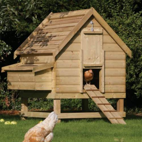 Chicken-Coop--Large-Chicken-Coop-Rowlinson-4.jpg