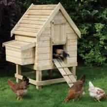 Chicken-Coop--Small-Chicken-Coop-Rowlinson-3.jpg