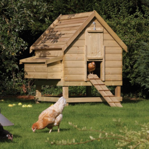 Chicken-Coop--Large-Chicken-Coop-Rowlinson.png